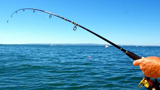 Ilha é premiada como destino turístico de pesca em São Paulo