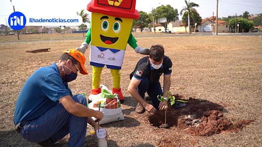 """""""Bosque de Ipês"""" será criado em memória às vítimas do Coronavírus em Ilha Solteira"""
